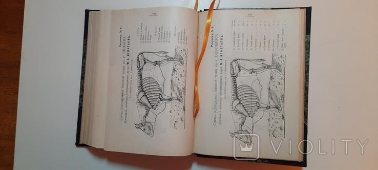 Александрова-Игнатьева.Основы кулинарного искусства 1902г, фото №8