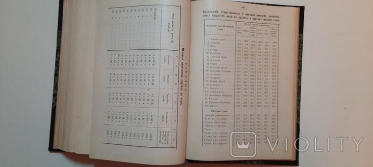 Александрова-Игнатьева.Основы кулинарного искусства 1902г, фото №9