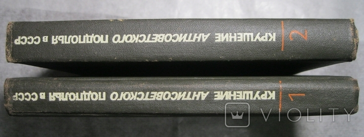 Крушение антисоветского подполья в СССР в 2-х книгах, фото №3