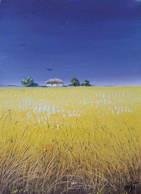 Картина, Сине небо жовте поле, 15х20 см. Живопис на полотні, фото №3