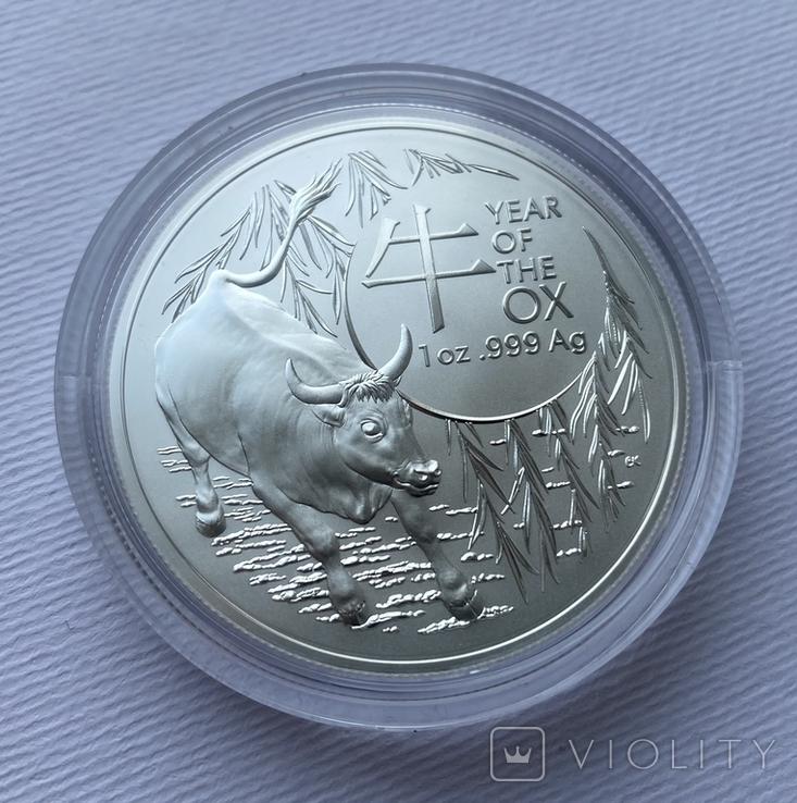 Новинка 2021 Год Быка Лунар от Royal Australian Mint, фото №3