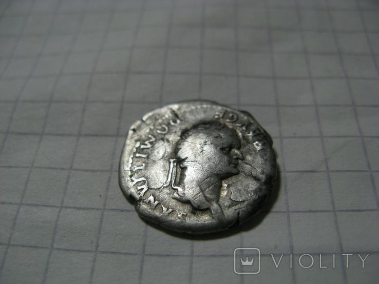 Денарий имп. Домициан Волчица, фото №3