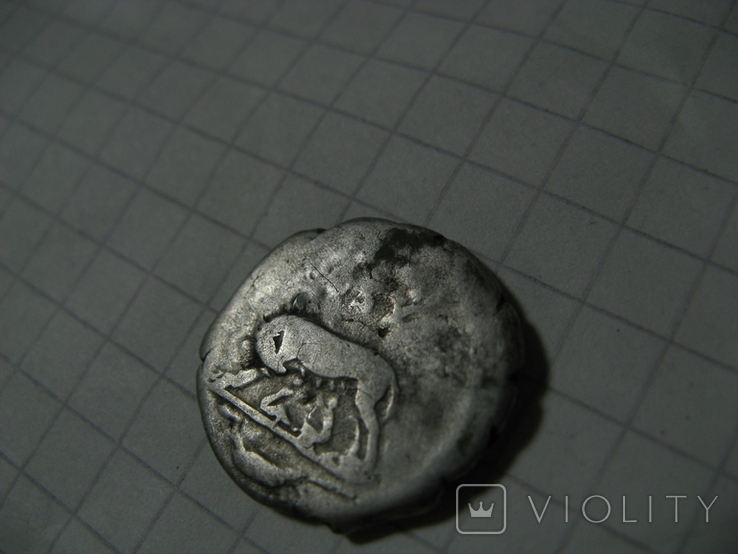 Денарий имп. Домициан Волчица, фото №6