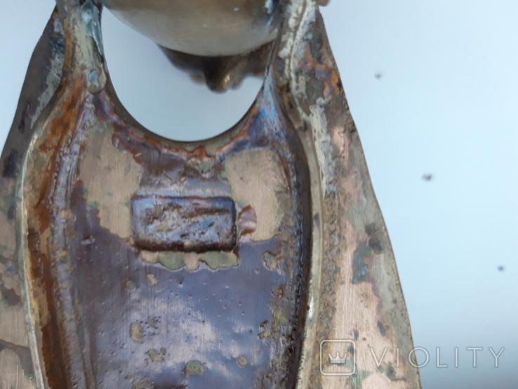 Муха бронзовая, фото №6