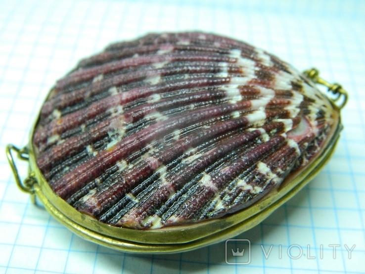 Шкатулка из ракушек, фото №3