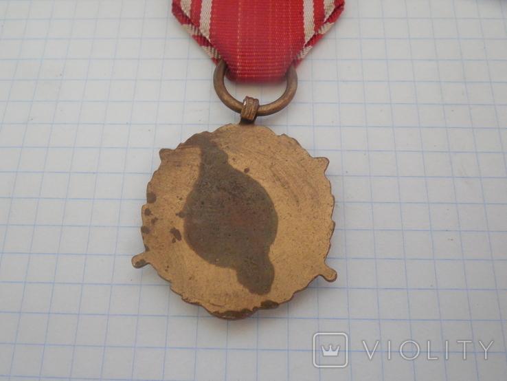 Медаль Вооруженные силы на службе Родине Польша, фото №8