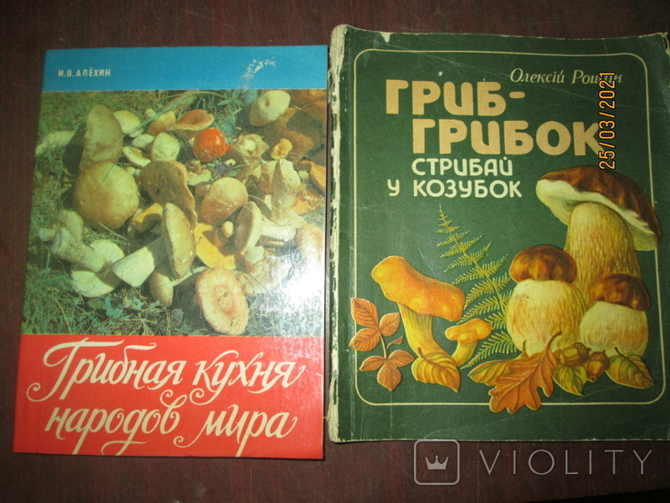 Грибная кухня народов мира -2 книги, фото №2