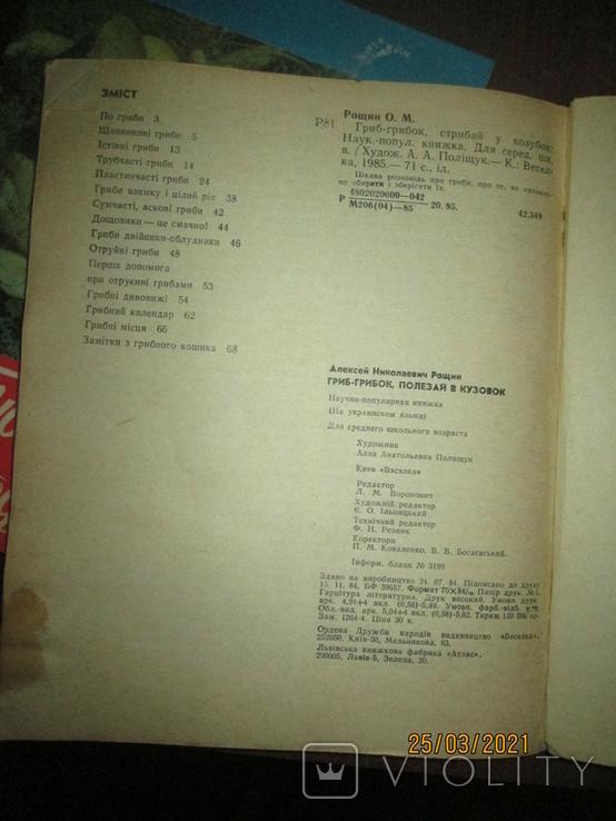 Грибная кухня народов мира -2 книги, фото №5