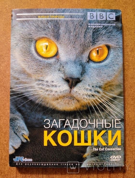"""DVD """"Загадочные Кошки"""" BBC коллекционное издание 2006 г., фото №2"""