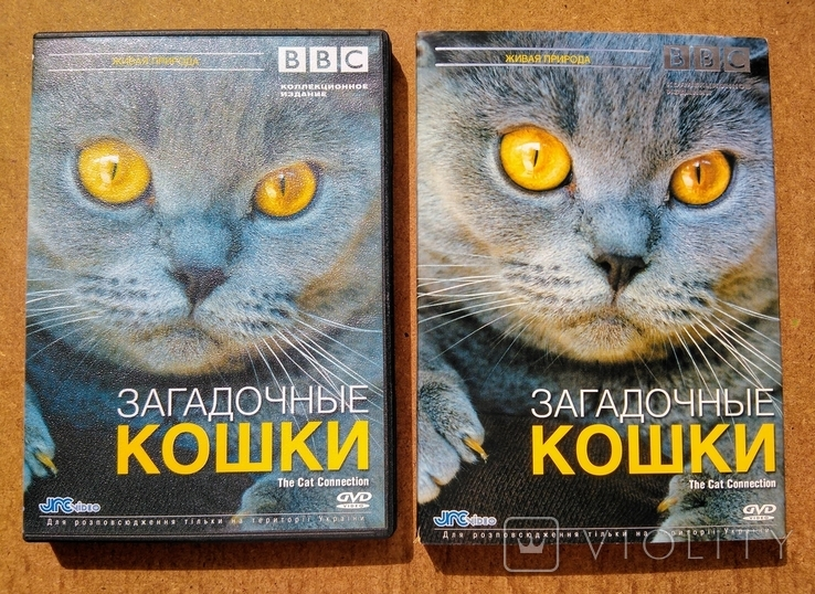 """DVD """"Загадочные Кошки"""" BBC коллекционное издание 2006 г., фото №8"""