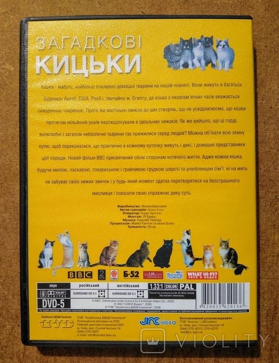 """DVD """"Загадочные Кошки"""" BBC коллекционное издание 2006 г., фото №9"""