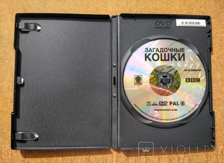 """DVD """"Загадочные Кошки"""" BBC коллекционное издание 2006 г., фото №10"""