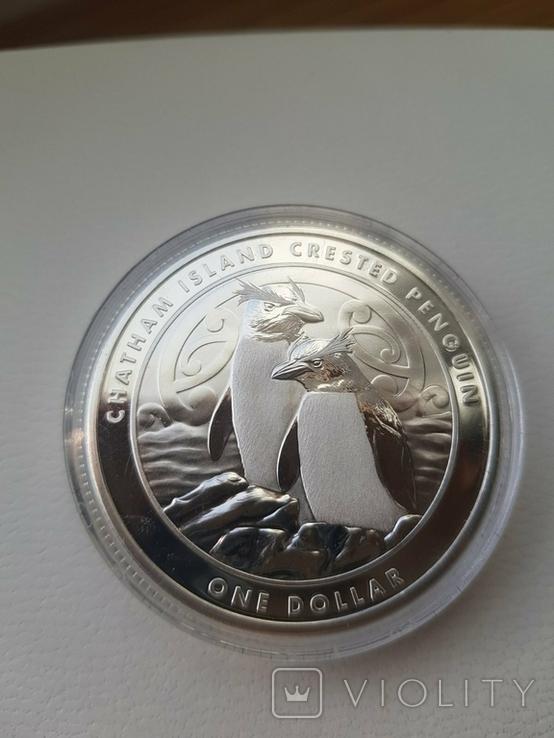 """New Zealand Срібна монета """"Пінгвін чубатий"""" 2020 1 унція, фото №4"""