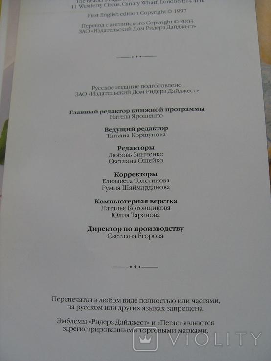 Кулинарный шедевр за 30 минут., фото №5