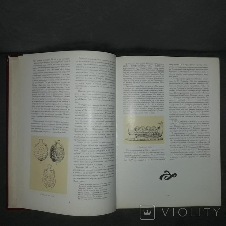 Книга о вине 1994 История виноделия Автограф, фото №12