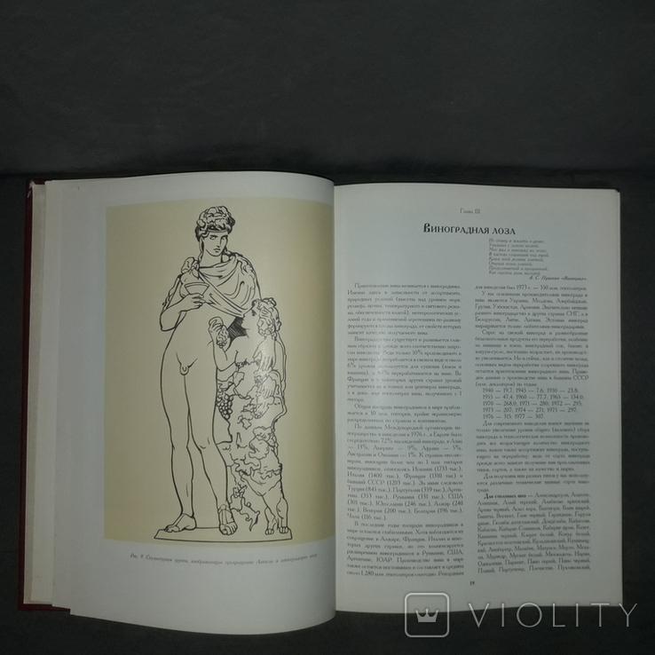 Книга о вине 1994 История виноделия Автограф, фото №13