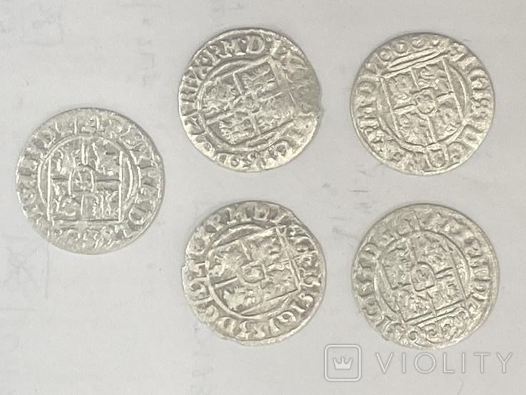 Монеты короля Сигизмунда 3 номиналом полторак, фото №3