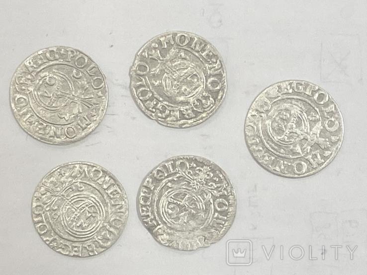 Монеты короля Сигизмунда 3 номиналом полторак, фото №4