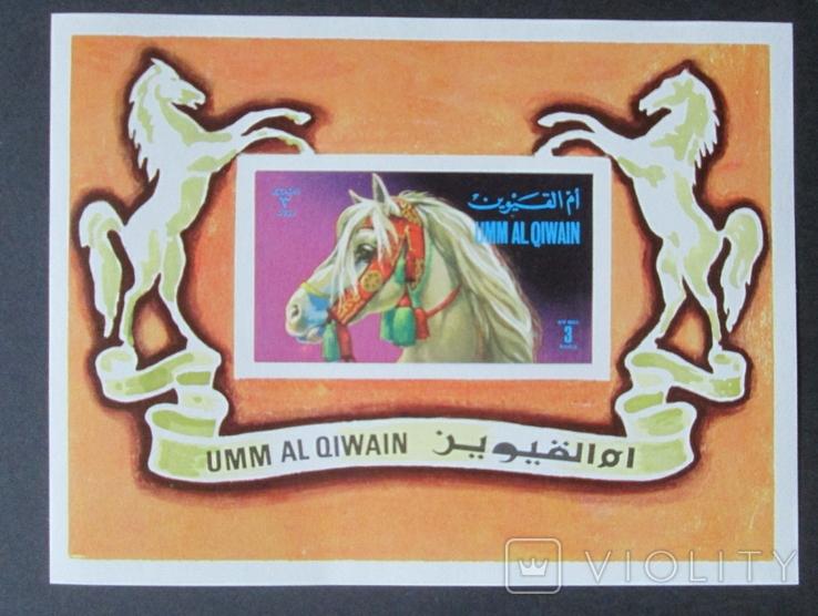 Ум аль Кайвайн. Лошади. (нТ), фото №2