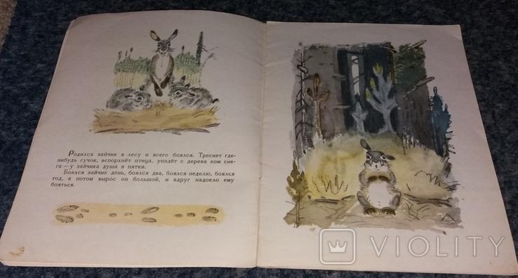 """Д. Мамин-Сибиряк. """"Сказка про храброго зайца - длинные уши"""". 1978 г., фото №4"""
