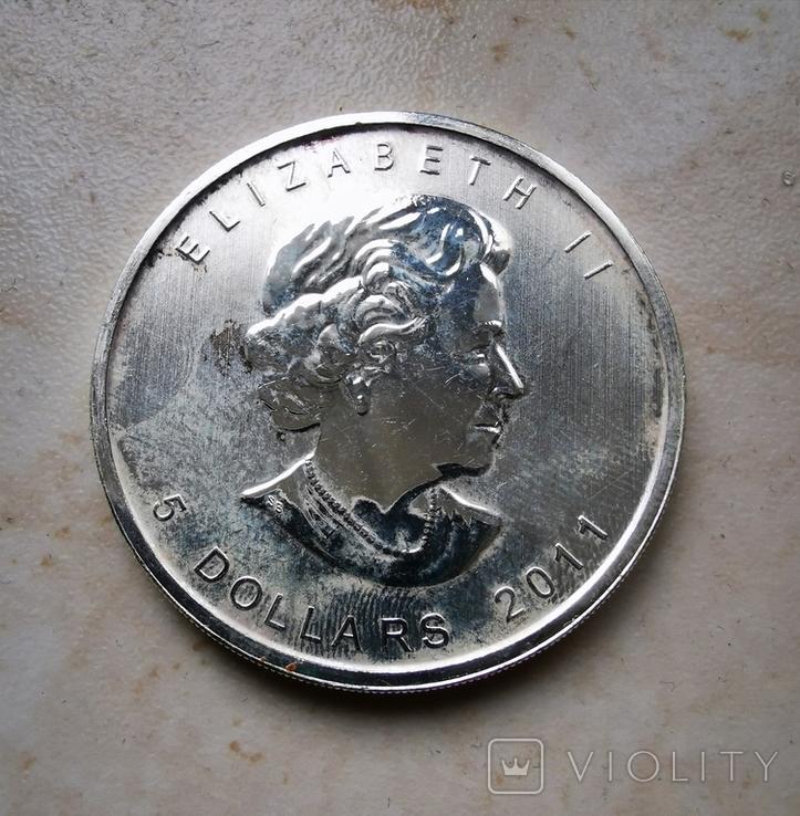 5 долларов 2011, Канада лист, 1oz, фото №3