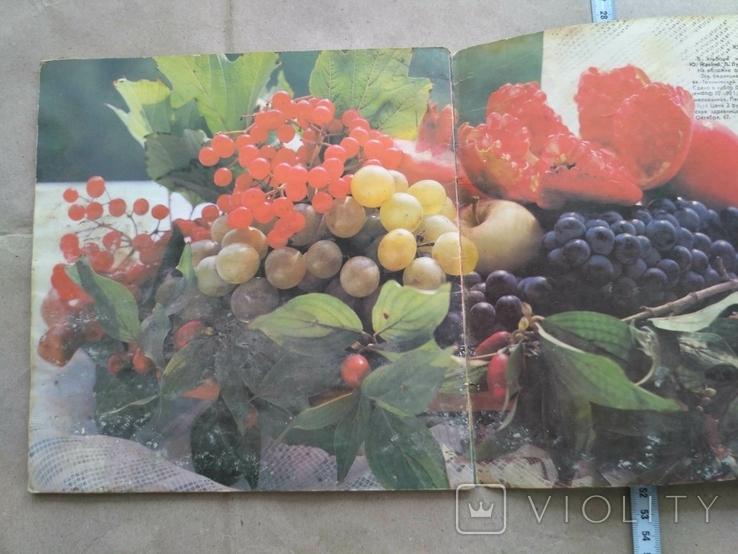 Кухня народов Кавказа, фото №4