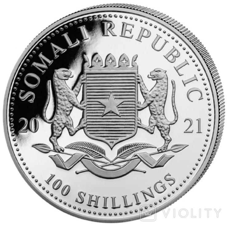 100 Шиллингов 2021 Слон (Серебро 0.999, 31.1г) 1oz, Сомали Унция, фото №3