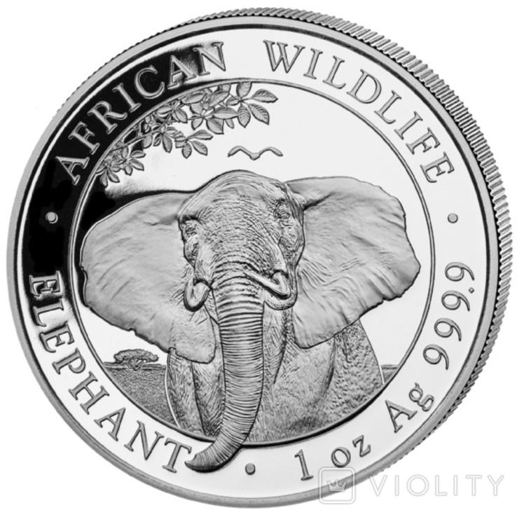 100 Шиллингов 2021 Слон (Серебро 0.999, 31.1г) 1oz, Сомали Унция, фото №2