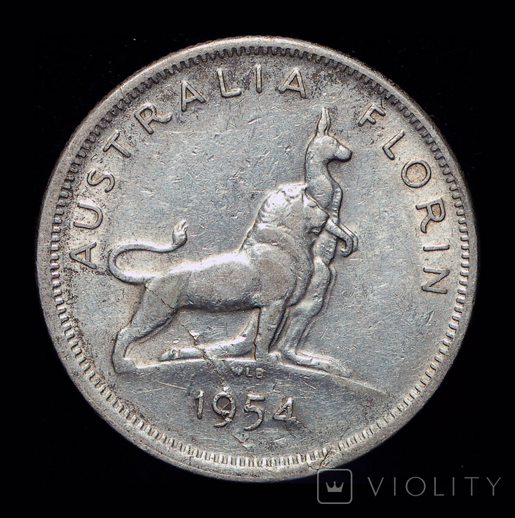 Австралия флорин 1954 серебро 11,31 грамм, фото №2