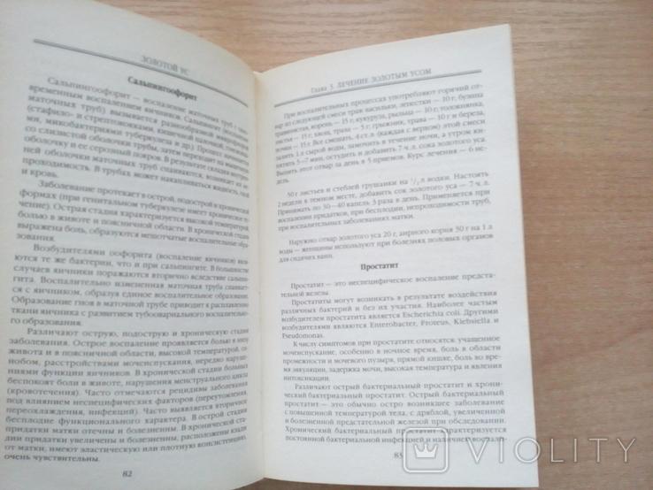 "Корзунова""Золотой ус,лук,лимон,чеснок""(Домашние целители)., фото №7"