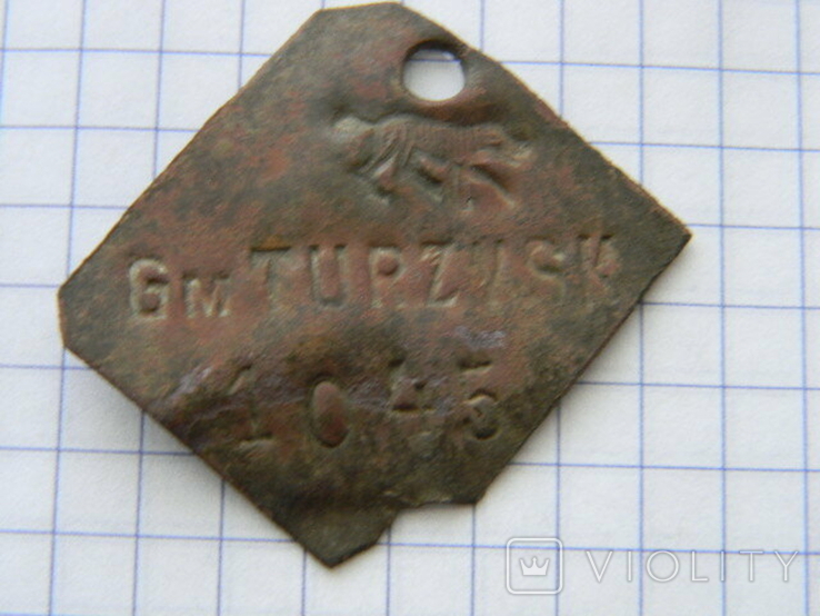 Собачий жетон гмина Турийськ.., фото №2