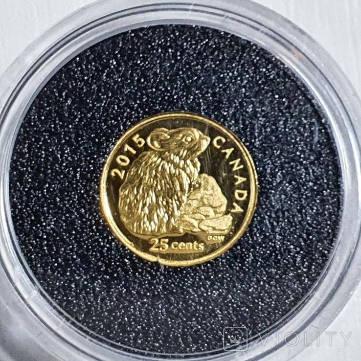 25 центов 2015 год, 9999 Canada, фото №4