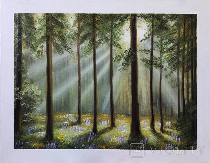 Картина, Вечер в летнем лесу, 55х70 см. Живопись на холсте, фото №3