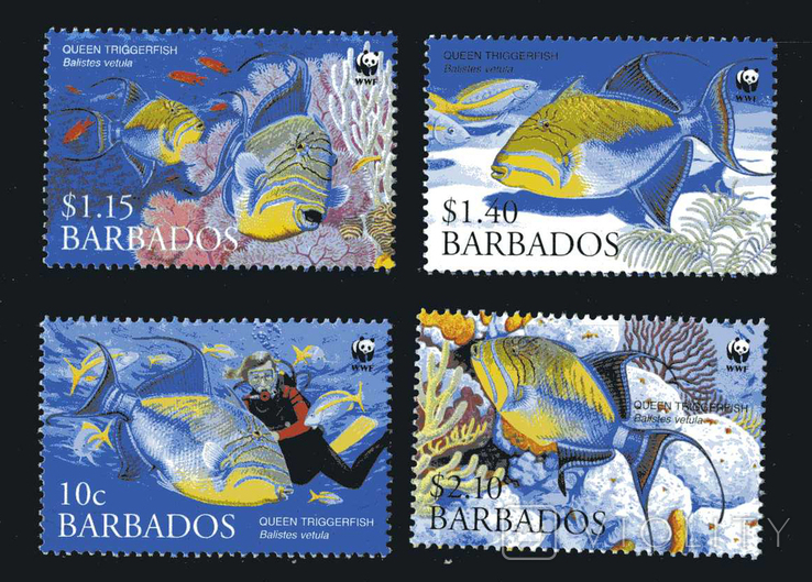 Барбадос 2006 - Рыбы. Фауна океана WWF