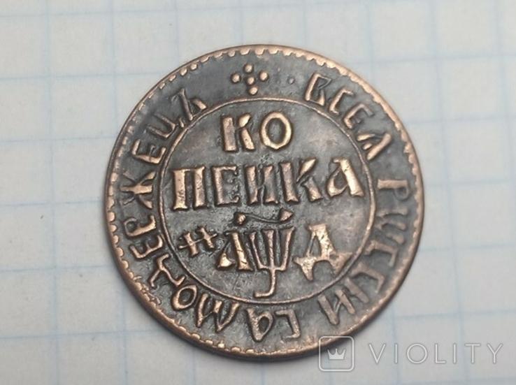 Копейка Петр копия, фото №2