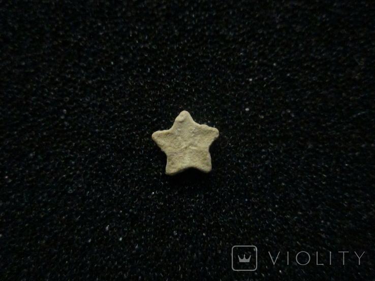 Звёздочка (разновидность морской лилии) №3, фото №3