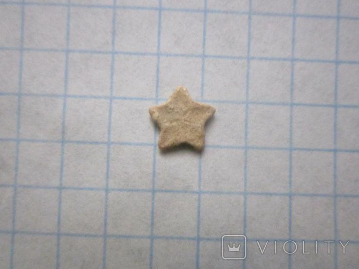Звёздочка (разновидность морской лилии) №3, фото №4