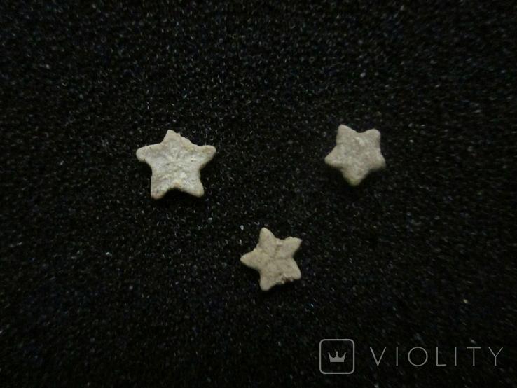Звёздочки (разновидность морской лилии) 3шт. №6, фото №2