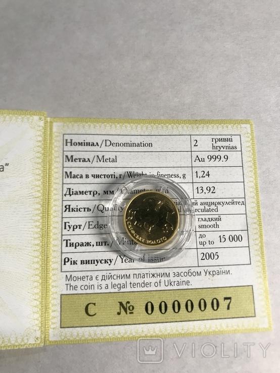 """Скіфське золото """"Вершник""""  2 грн 2005 золото """"Всадник"""" сертификат № 7, фото №3"""