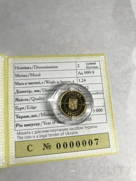 """Скіфське золото """"Вершник""""  2 грн 2005 золото """"Всадник"""" сертификат № 7, фото №4"""