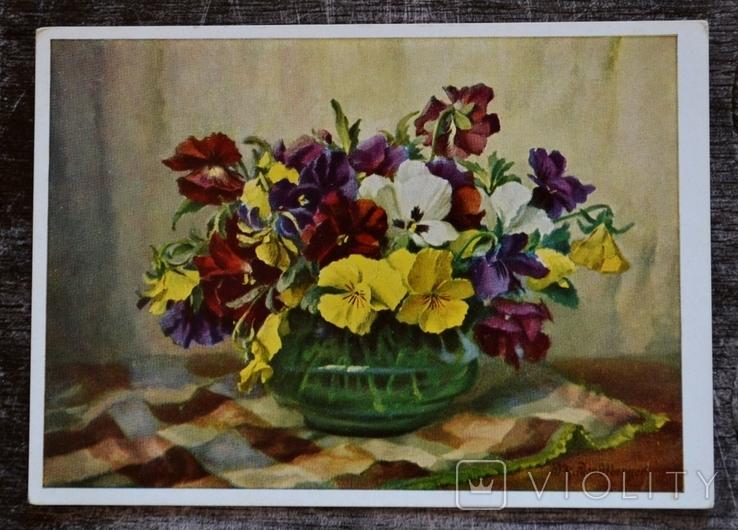 Винтажная открытка W. H. Wendlberger. Цветы. Фиалки. Германия. 1977 год., фото №2
