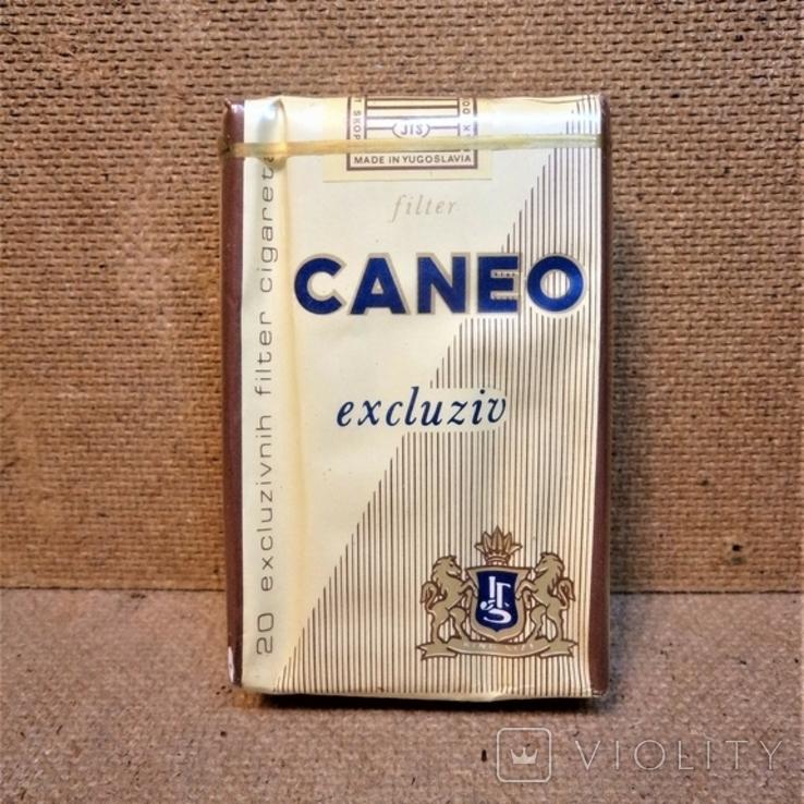 Сигареты caneo купить куплю сигареты без акциза в россии