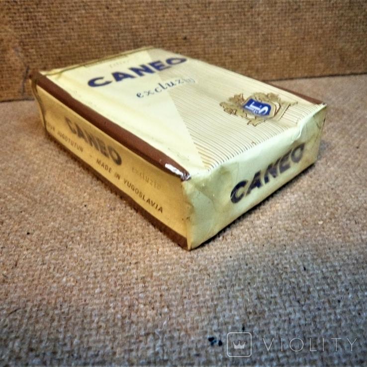 сигареты caneo купить