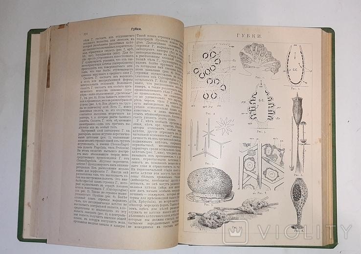 Энциклопедический словарь Гранат. Том 17, фото №3