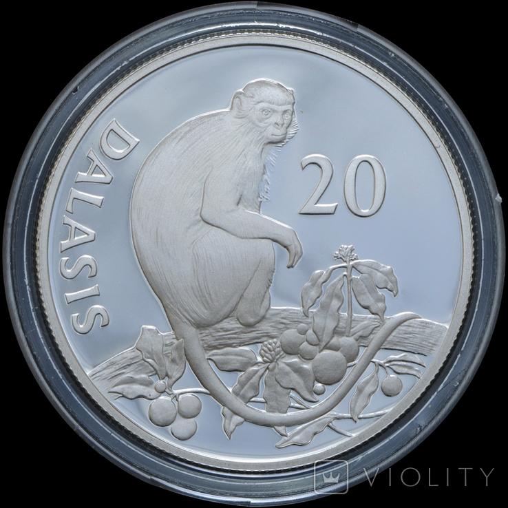 20 Даласи 1987 Всемирный фонд дикой природы (Серебро 0.925, 28.34г), Гамбия, фото №2