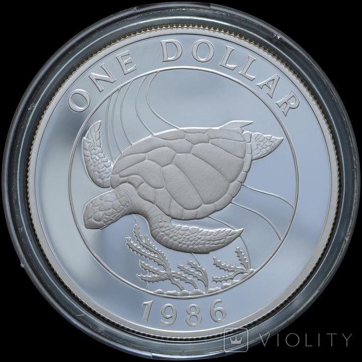1 Доллар 1986 Черепаха - 25 лет Всемирному фонду дикой природы (0.925, 28.28г), Бермуды, фото №2