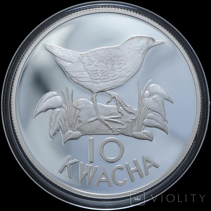 10 Квача 1986 Птица - Всемирный фонд дикой природы (Серебро 0.925, 27.22г), Замбия, фото №2