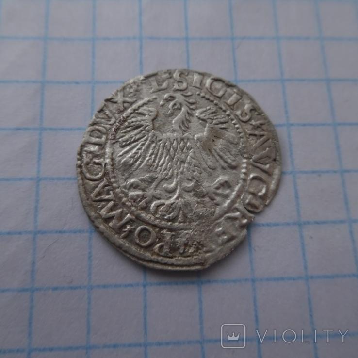 Півгріш 1559р., фото №6