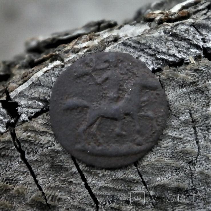 Пуговичка охотника, фото №2