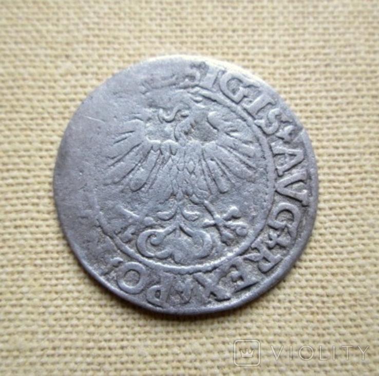Полугрош 1561 г., фото №3